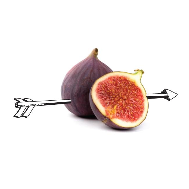 PEA29 Fig Heart